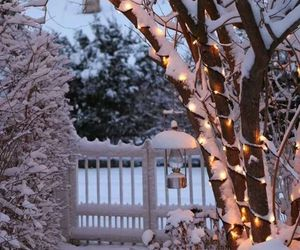 snow, winter, and withe image