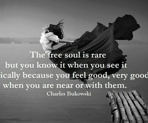 quote, free, and soul image