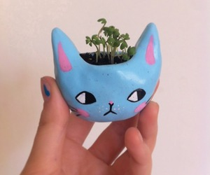 cat and plant image