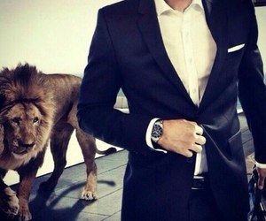 lion, suit, and man image