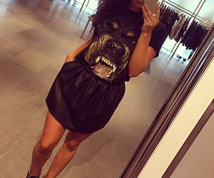 Givenchy, rottweiler, and summer image