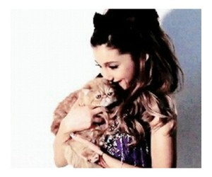 ariana, cat, and grande image