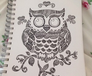draw, owl, and drawing image