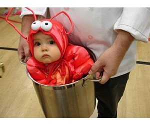 baby, costume, and lobster image