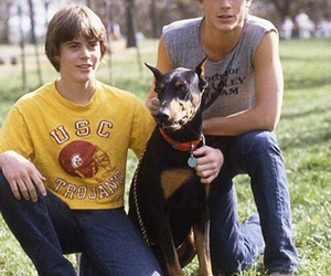 family, sodapop curtis, and c. thomas howell image