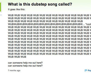 funny and dubstep image