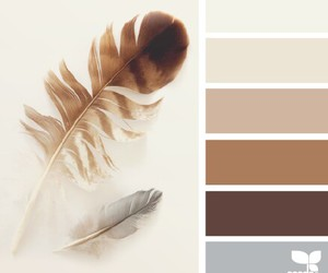 color palette, earth tones, and colors image