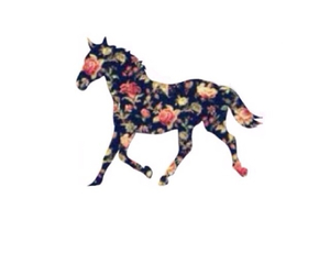 flowers, horse, and overlay image
