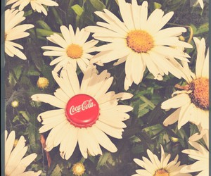 coca cola, daisies, and flowers image