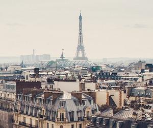 buildings and paris,eiffel tower,france image