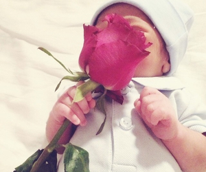 baby and rose image