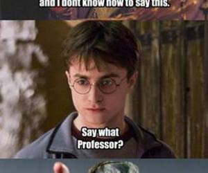 harry potter, gandalf, and funny image