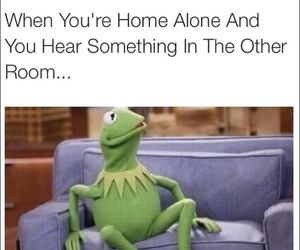 alone, funny, and home image
