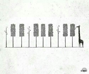 giraffe, piano, and tree image