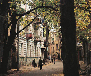 street, city, and autumn image