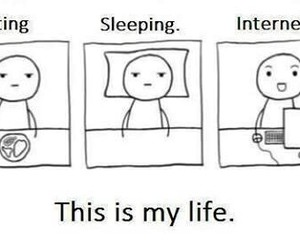 life, internet, and funny image