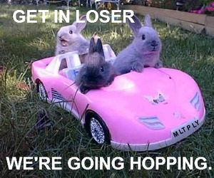 car, fluffy, and pink image