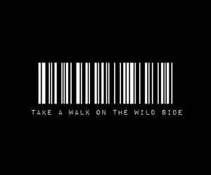 wild and born to die image