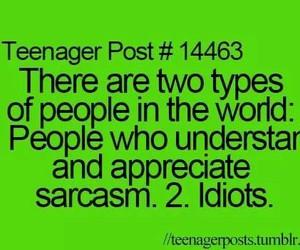 sarcasm, teenager post, and idiots image
