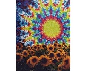 hippie, sunflower, and background image