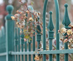 flowers, fence, and garden image