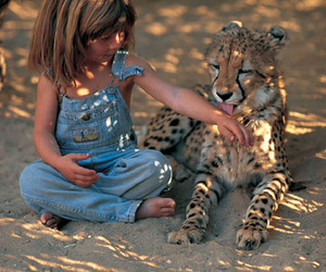 animal, child, and leopard image