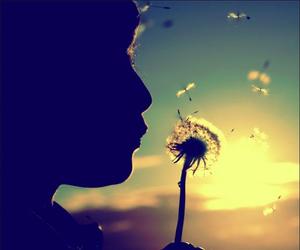 wish, flowers, and sun image