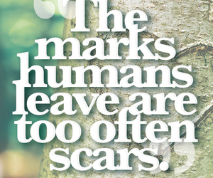 quotes, john green, and scars image