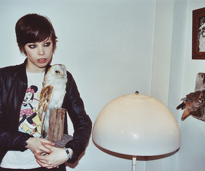 Crystal Castles, Alice Glass, and owl image