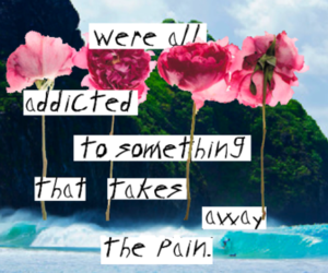 flowers, pain, and quote image