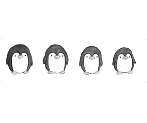 penguin, animal, and transparent image