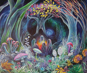 mushroom, psychedelic, and nature image