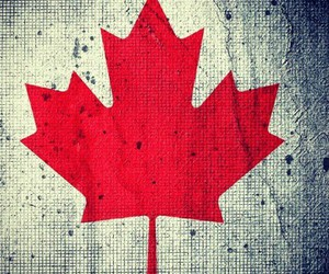 canada, justin, and canadanboy image