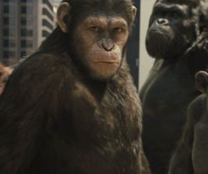 caesar and planet of the apes image