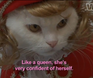 cat, Queen, and confident image