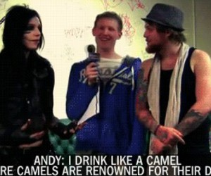 black veil brides, bryan stars, and camel image