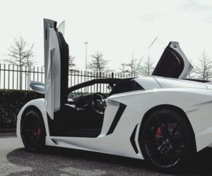 car, Lamborghini, and luxury image