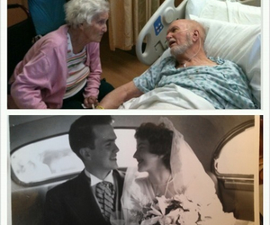 couple, old, and forever image