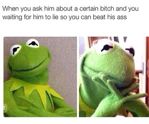 funny and kermit image