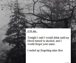 quote, sad, and alcohol image