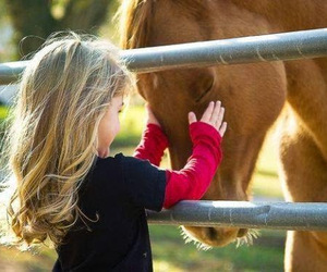 horse and kids image