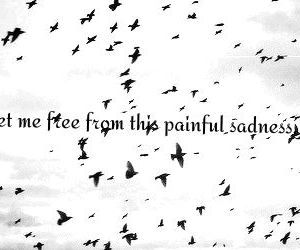 birds, quote, and set me free image