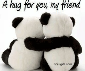 hug and friends image