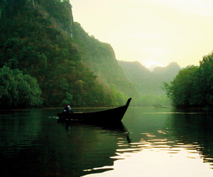 nature, boat, and forest image