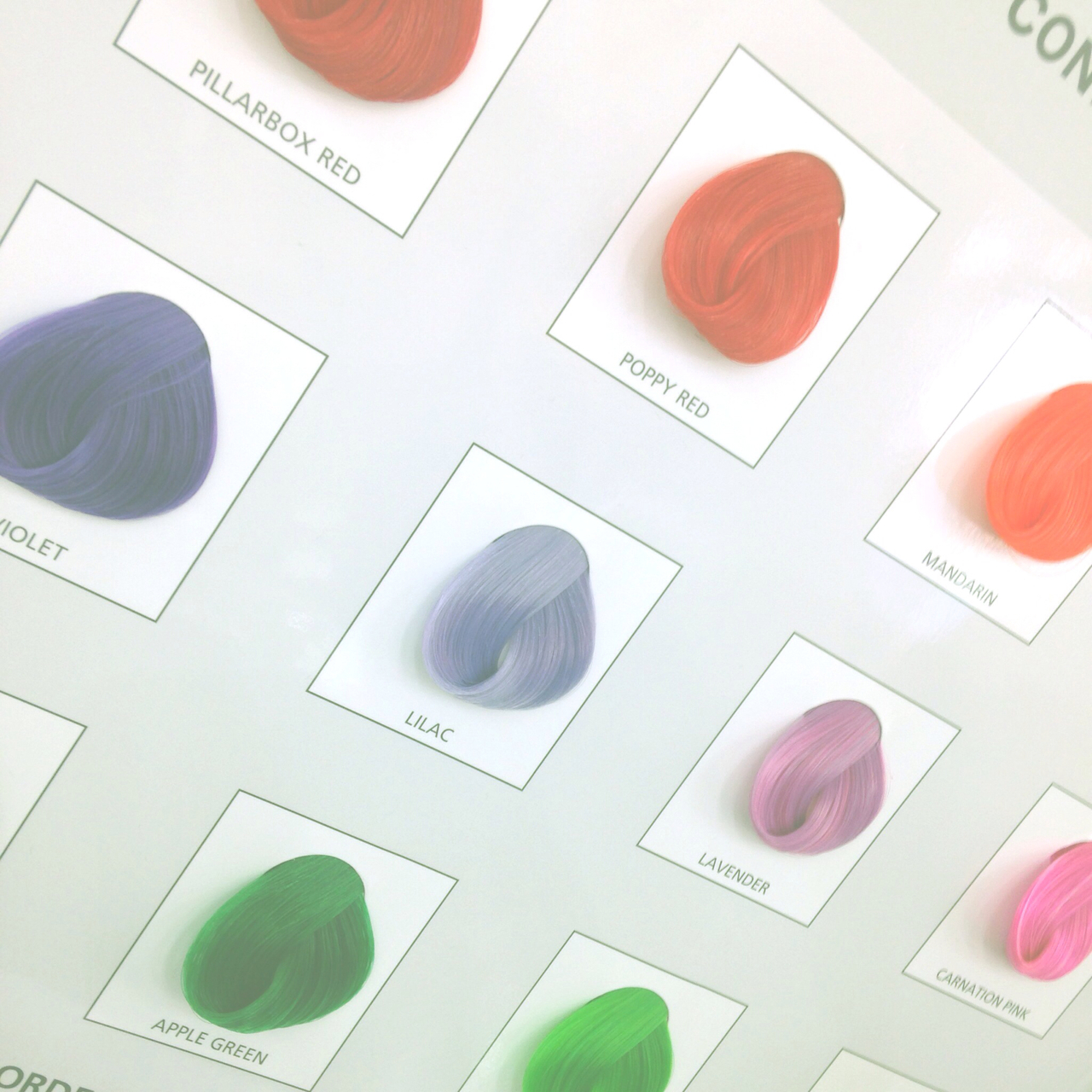 colour, directions, and dye image