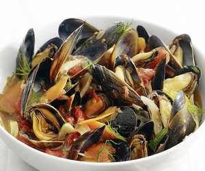 food and mussels image