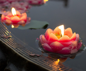 candle, lotus, and pretty image