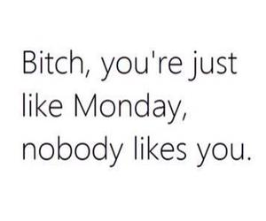 monday, bitch, and quotes image