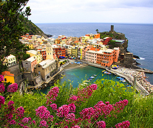 flowers, italy, and city image