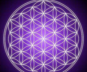 life and flower of life image